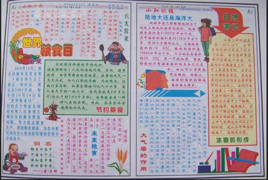 中小学世界粮食手抄报